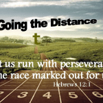 Weekly Bulletin - Going the Distance